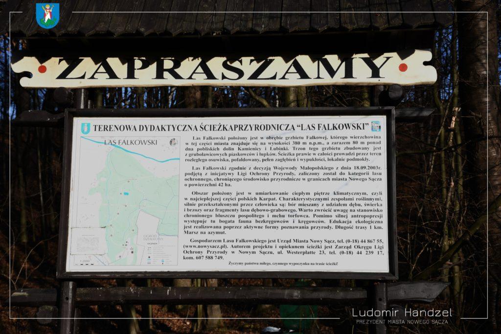 Ścieżka przyrodnicza Las Falkowski